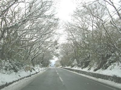 雪の遠笠山道路
