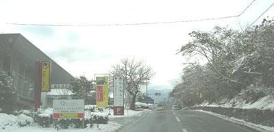 雪わんわん