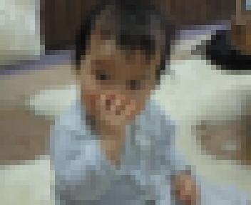 NEC_3878.JPG