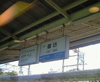 NEC_6154.JPG