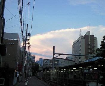 NEC_6829.JPG