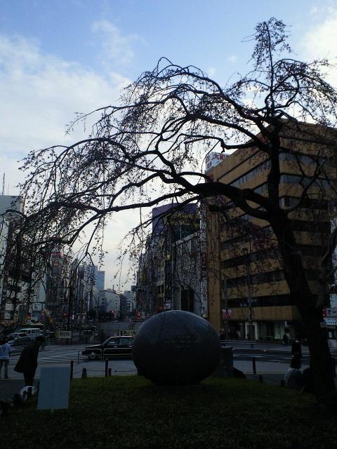 201103201657000.jpg