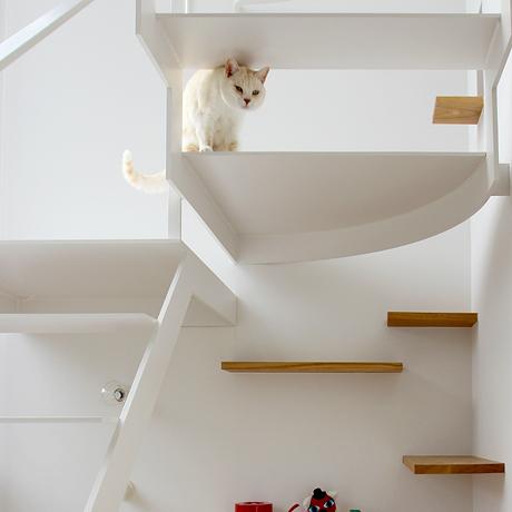 高崎市 ペットの飼える家