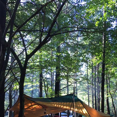 軽井沢キャンプ
