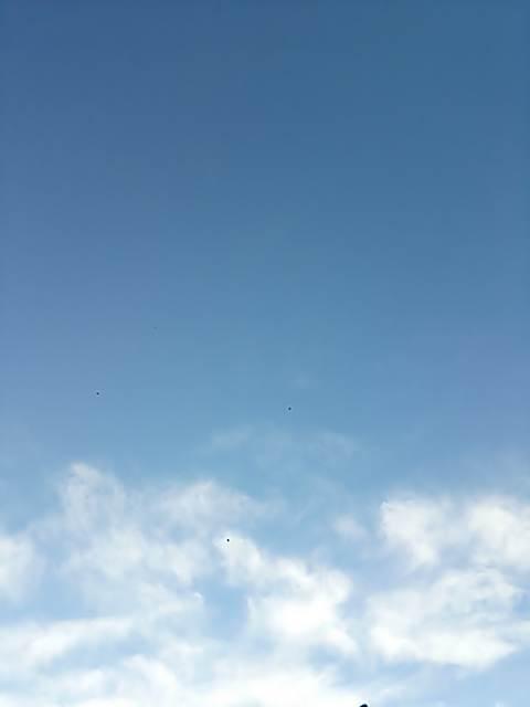 20150102-3(青空)