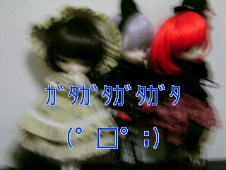 SN3D09870001.jpg