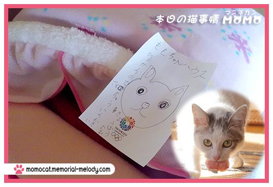 猫マンチカンももちゃん0116