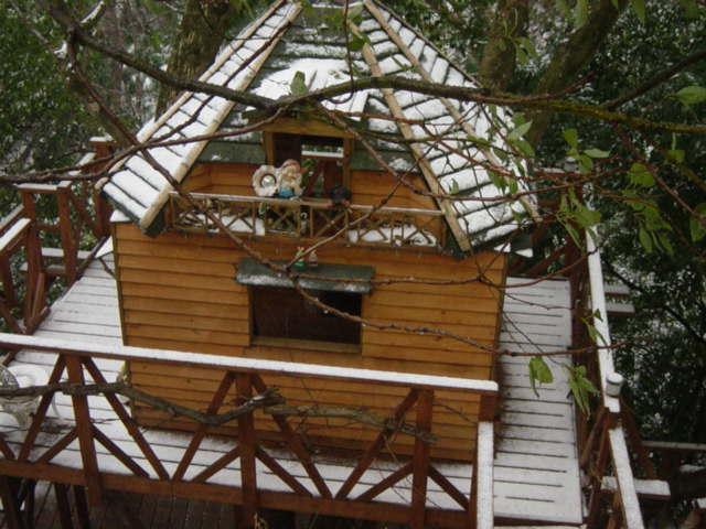 雪化粧のツリーハウス