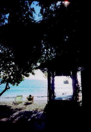 サメッド島の木陰