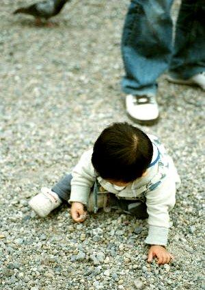 大須観音で遊ぶ子供