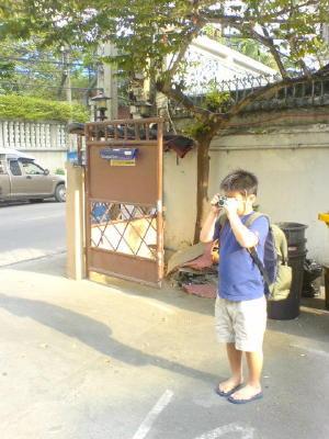 タイを撮るまある。