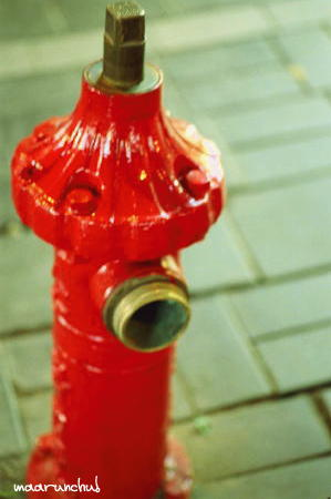 ソウルの消火栓