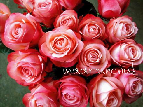 バラのように