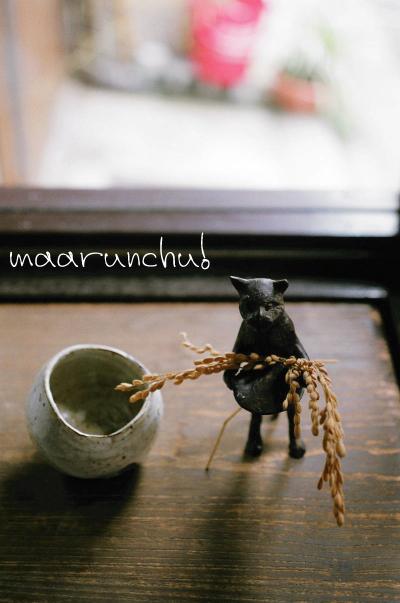 稲を持つ猫