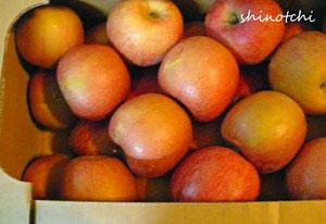 りんご 節約 規格外 買い物 食費節減