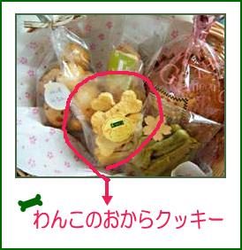 おからのクッキー