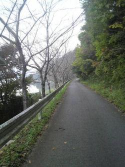 walking012