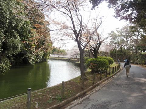 姫路城ウォーキング1