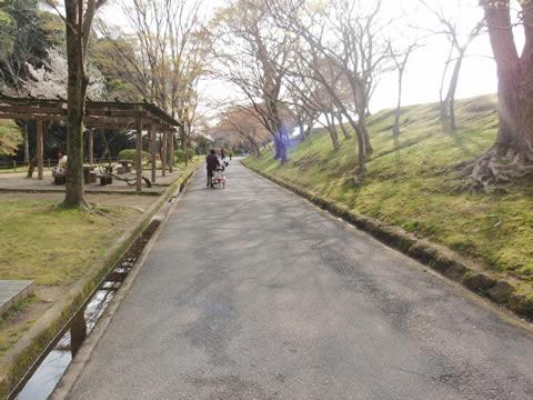 姫路城ウォーキング2