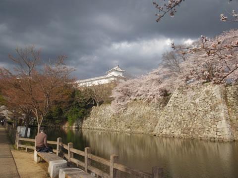 姫路城ウォーキング3