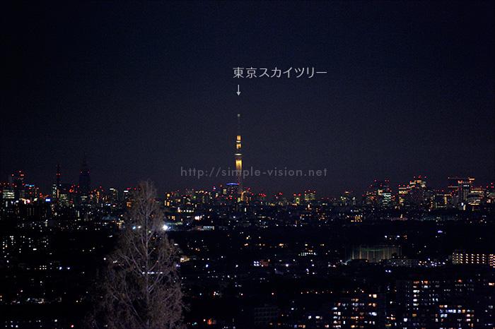 よみうりランド「ジュエリー・タワー」からの東京スカイツリーの眺め