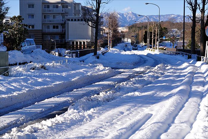 2月16日(日)朝の上柚木公園前道路の積雪状況