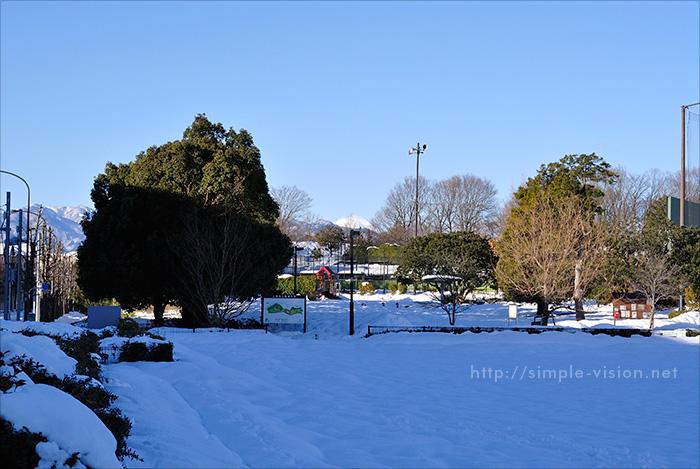 2月16日(日)朝の上柚木公園積雪状況