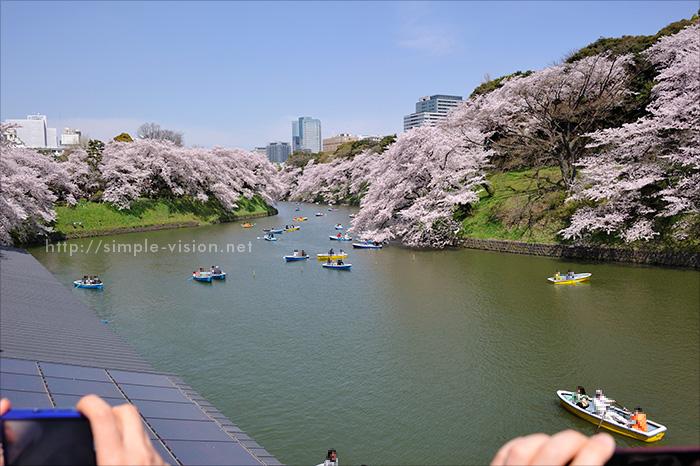 千鳥ヶ淵の桜とボート(広角撮影)