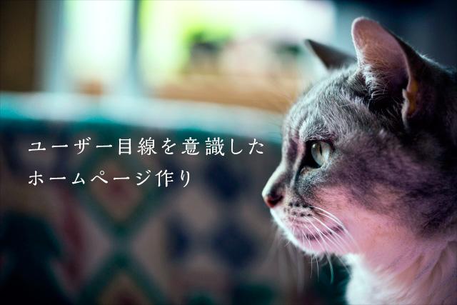 """猫のユーザー目線"""" width="""