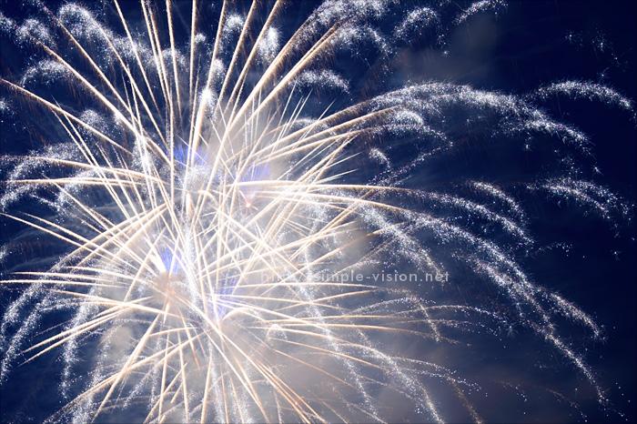 花火の写真撮影例