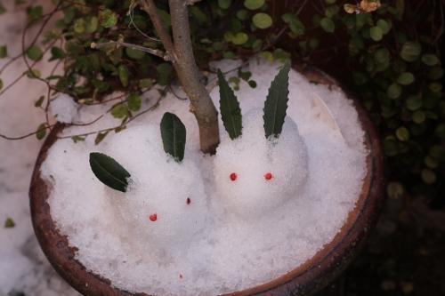 雪うさぎっ!