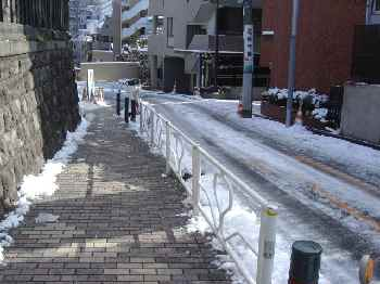 凍結しなかった歩道