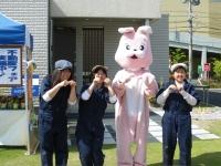 ウサギと1