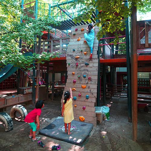 子供 遊べる こんな園庭で遊べる子供達が羨ましい その1 - 20140807_1501429