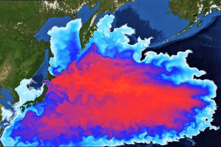 福島原発による海洋汚染Mar2011-Mar2012