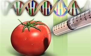 遺伝子組み換え食品にも、テスラ・プレート